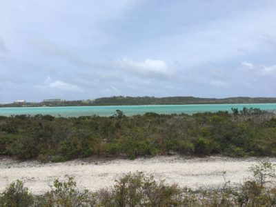 Land For Sale Real Estate Listings Turks Caicos Coldwell Banker